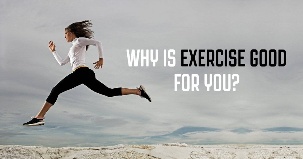 The Countless Benefits of Regular Exercise